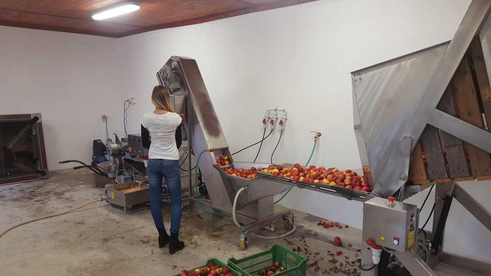 Fruit processing line - cider production equipment